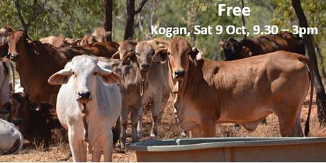 Cattle breeding and nutrition – the basics tickets