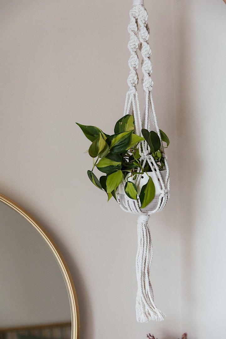 Macrame Plant Hanger Workshop image