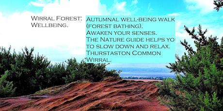 Wirral Forest:wellbeing. Thurstaston Mindful Walk (Forest Bathing) tickets
