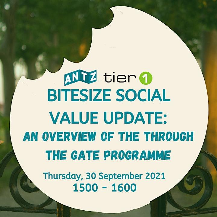 ANTZ Bitesize Social Value Update! Online 30 September 2021 image