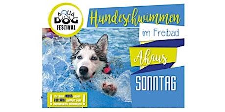 7. Aqua-Dog-Festival Tickets