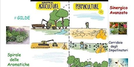 Corso avanzato di Agricoltura Sinergica e PERMACULTURA ONLINE Prima puntata biglietti