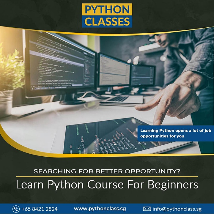 Best Python Programming Course for Beginners Singapore - Python Classes image