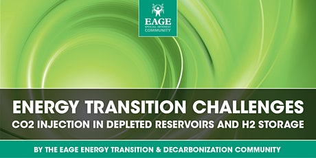 ENERGY TRANSITION CHALLENGES: CO2 INJECTION AND H2 STORAGE tickets