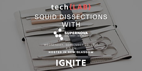tech{LAB} Squid Dissection with SuperNOVA tickets