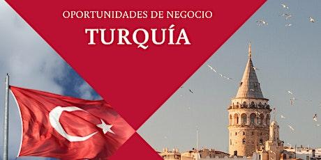NETWORKING EN TURQUIA ingressos