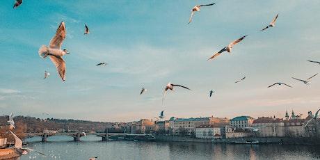 Co-Searching workshop: Het sollicitatiegesprek in vogelvlucht tickets