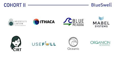 BlueSwell Incubator: Meet the Founders (virtual) biglietti