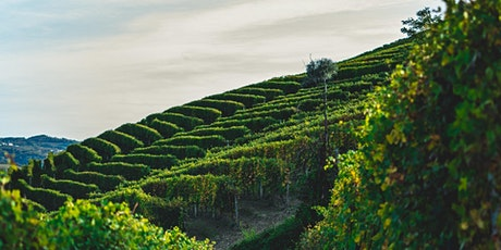 Wine Education Night: Piedmont tickets