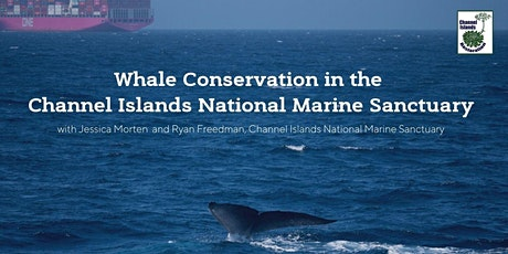 Whale Conservation in the Channel Islands National Marine Sanctuary tickets