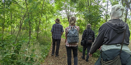 Wellness Walk  - Get Outside in Nature tickets