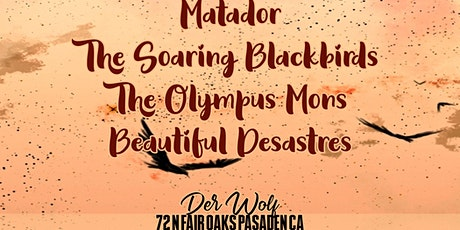 Matador - The Olympus Mons - The Soaring Blackbirds - Beautiful Desastres tickets