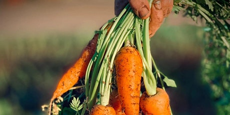 If you want to help change the world - eat a nutrient dense carrot! tickets