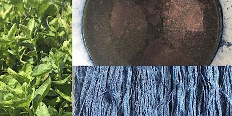 Fresh Leaves Indigo Dye Workshop (Art Students Only) billets