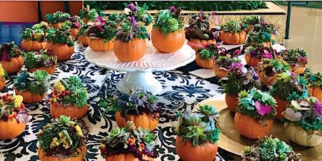 DIY Succulent Pumpkin tickets