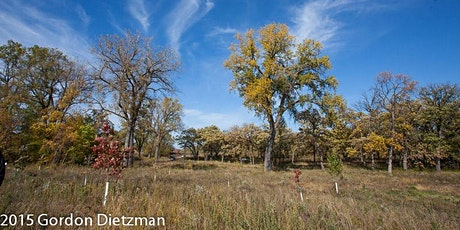 Hike With A Ranger: Prairie Seed ID tickets