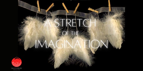 A Stretch of the Imagination tickets