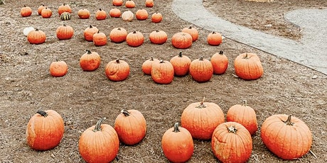Pumpkin Patch at the Rescue Farm, October 16 tickets