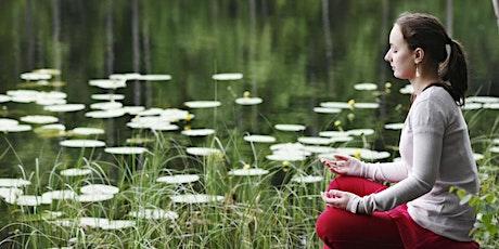 ONLINE : Let's Meditate: Stockholm - Sunday Meditation for Inner Peace. biljetter