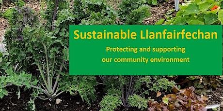Llanfairfechan Community Planning Partnership Group Session 1. tickets