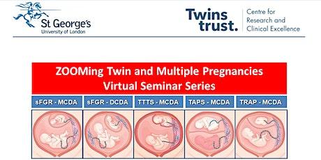 Twin and Multiple pregnancy Webinar tickets