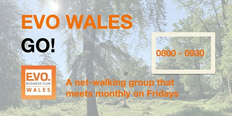 EVO WALES GO!  - our  net-walking meeting (for Members + Guests) tickets