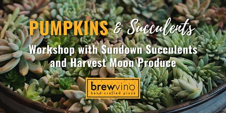 Pumpkins & Succulents Workshop at BrewVino 2021 tickets