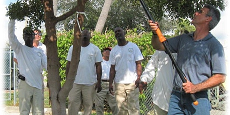ON-LINE! Tree Trimmer Certification: ADVANCED ENGLISH tickets