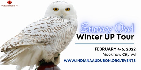Winter Snowy Owl UP Tour tickets