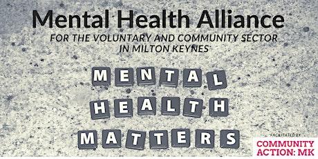 Mental Health Alliance - Meeting 2: Governance tickets
