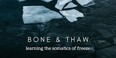 bone & thaw: fundraiser for the Black Indigenous Harm Reduction Alliance tickets