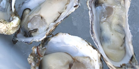 Ocean State Oyster Festival 2021 tickets