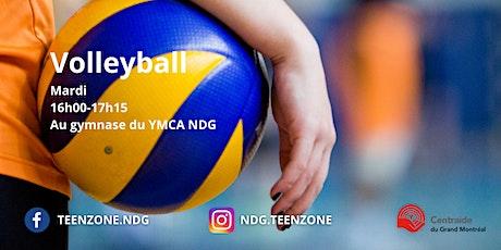 Volleyball billets