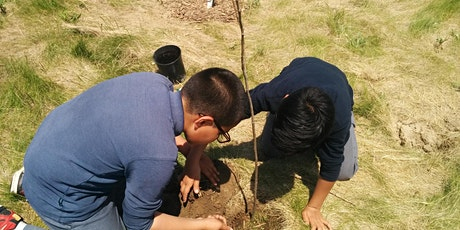 Downsview Park Nature Connection:  Tree Planting tickets