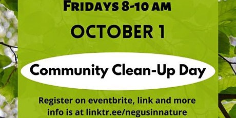 NIN Rising Routine : Community Clean-up tickets