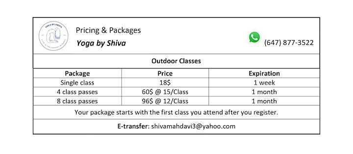 Outdoor Hatha Yoga Class - Willowdale Park (Beginner) - 50% off first class image