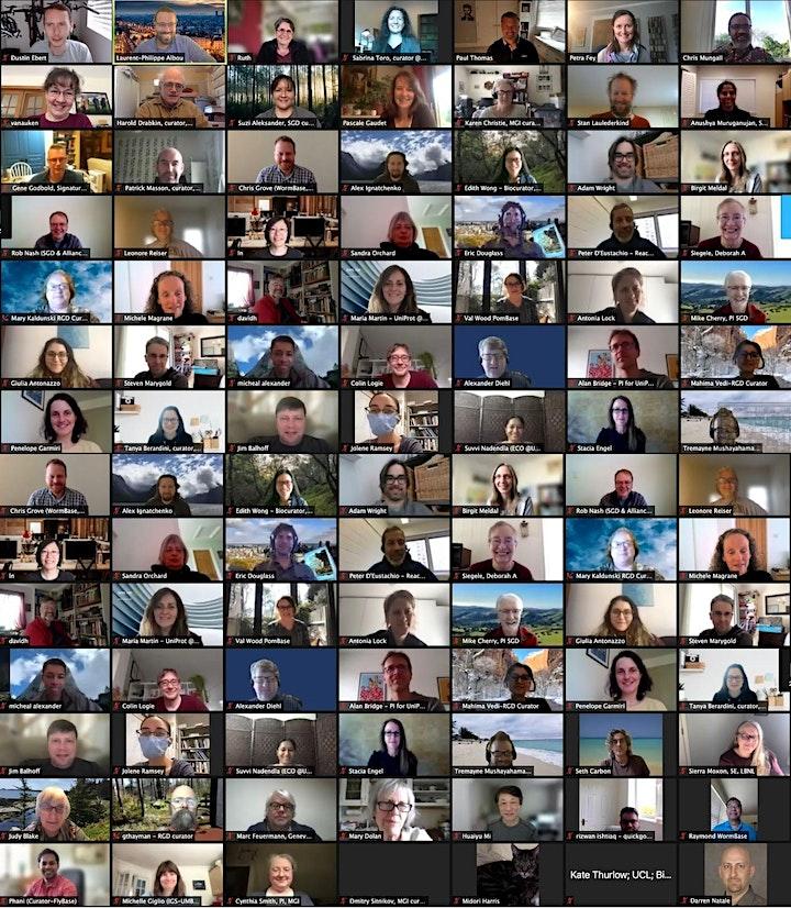 October 2021 Virtual GO Consortium Meeting image
