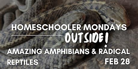 Homeschooler Mondays Outside | Amazing Amphibians & Radical  Reptiles tickets