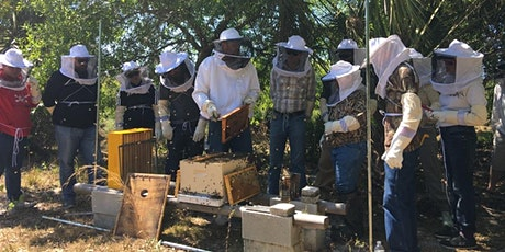 Intro to Beekeeping | Become a Beekeeper 2-day Hands-On Workshop tickets