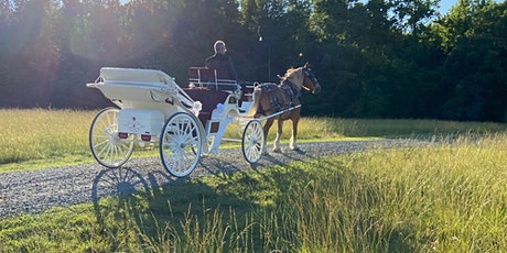 Horse-Drawn Carriage Rides at Washington's Fall Crawl tickets