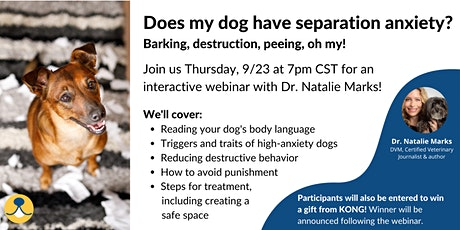 Does my dog have separation anxiety? Barking, destruction, peeing, oh my! tickets