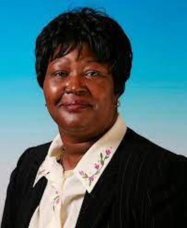 Britain Zimbabwe Society 2021 AGM image