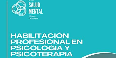 Diplomado Habilitación Profesional en Psicología y Psicoterapia entradas