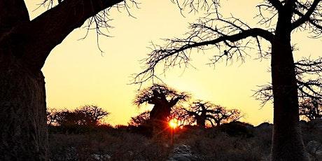 Roland Marske - Afrika - Namibia & Botswana tickets