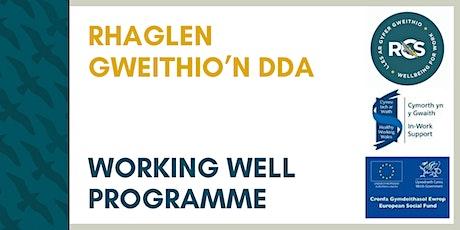 Becoming a Wellbeing Employer / Dod yn Gyflogwr Llesiant tickets