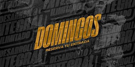 DOMINGO EN CCE entradas