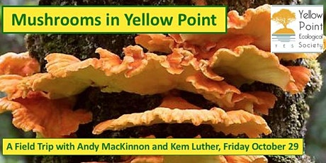 Mushrooms in Yellow Point - A Field Trip tickets