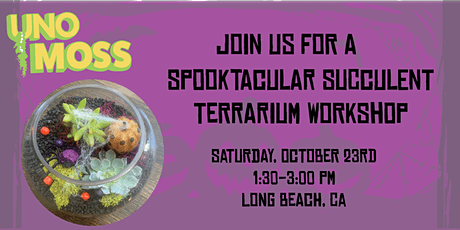 DIY Spooky Succulent Terrarium tickets