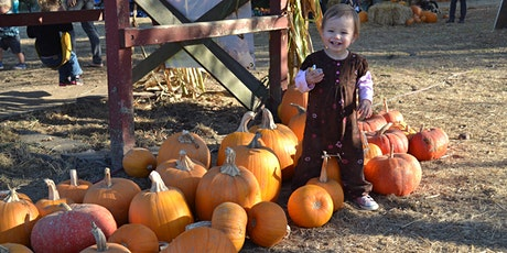 Pumpkin Patch & Apple Picking tickets