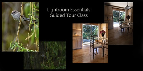 Lightroom Essentials Guided Tour tickets